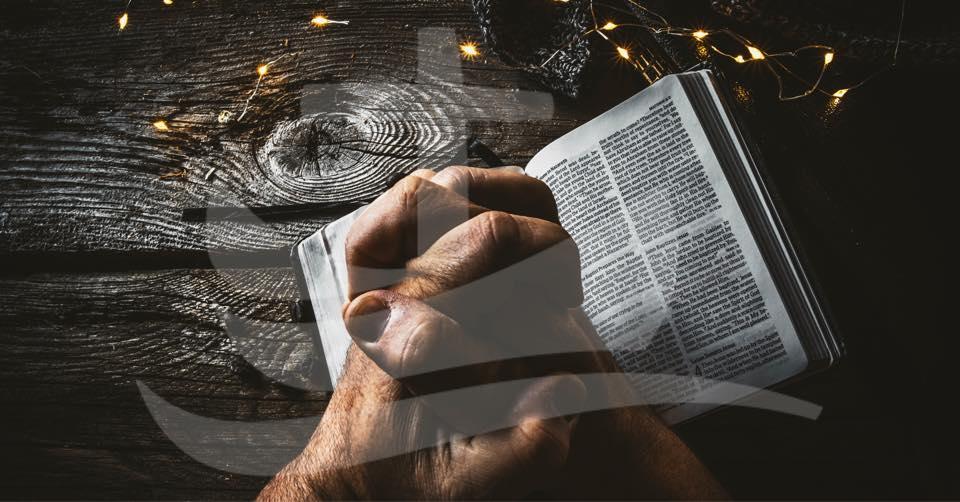 Bønneuken 2021: Små bønner blir store